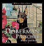 The Doberman Pinscher - Brains and Beauty