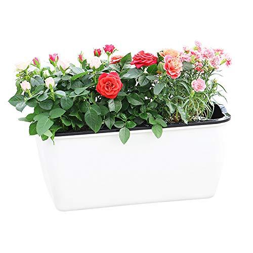 Plantenpot Buiten Bloempotten Kleine Potten Pot Plant Bloempotten Plastic Plant Pot Grote Plant Potten Outdoor Plant Potten Kleine Plant Potten