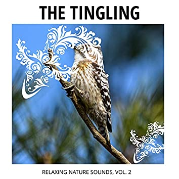The Tingling - Relaxing Nature Sounds, Vol. 2