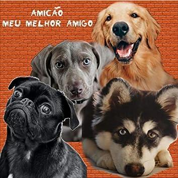 Amicão Meu Melhor Amigo (feat. Anjóla)