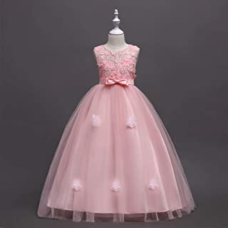 Lace Embroidery Piano Performance Wedding Ball Gowns Age 3-14 Years Old Girls Flower Dress (Color : Pink, Size : 130cm)