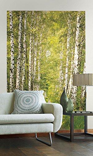 Sunny Decor SDNW301 XXL-Vliesposter/Fototapete Birch Path, Bunt, 124 x 184 cm