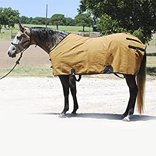 Best canvas horse stalls Reviews