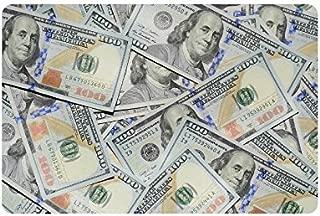 INTERESTPRINT Hundreds of 100 Dollar Bills Non-Slip Indoor and Outdoor Door Mat Rug Home Decor, Entrance Rug Floor Mats Rubber Backing, 23.6