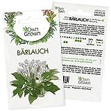 Bärlauch Samen: Premium Bärlauch Saatgut für die Anzucht von ca. 30 Bärlauch Pflanzen im Garten – Wildkräuter Samen...