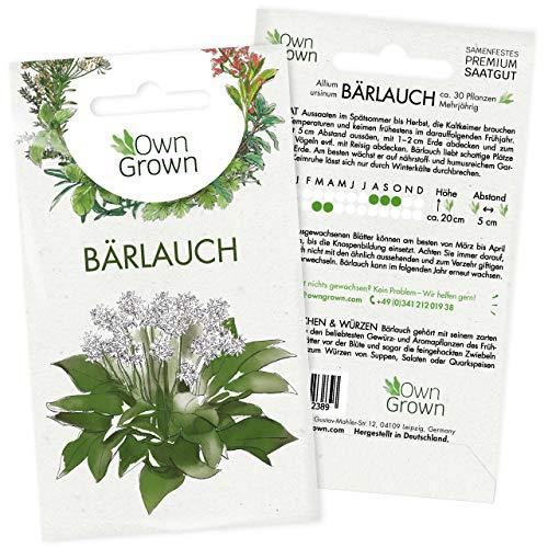 Bärlauch Samen: Premium Bärlauch Saatgut für die Anzucht von ca. 30 Bärlauch Pflanzen im Garten – Wildkräuter Samen – Kräuter Samen Bärlauch – Kräuter Saatgut – Gartenkräuter Pflanzen von OwnGrown