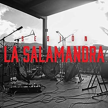 La Salamandra (Sesión En Vivo)