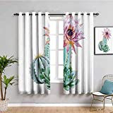 Cortinas de cactus Decor Black Out para dormitorio Cactus Spikes Flower in Hot Mexican Desert Sand Botanic Natural Image Protective Furniture Pink Green and Blue W52 x L63 pulgadas