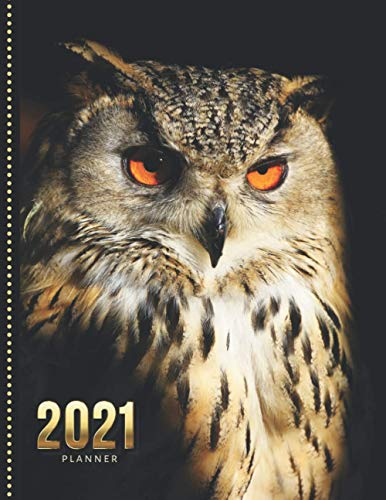 2021 Planner: Brown Great Horned Owl Bird Photo / Daily Weekly Monthly / Dated 8.5x11 Life Organizer Notebook / 12 Month Calendar - January to ... Cover/ Cute Christmas or New Years Gift