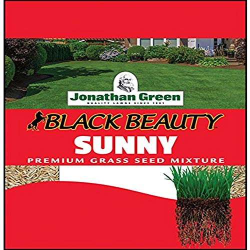 One of the best grass to grow in Florida is Jonathan Green Full Sun Grass #grass #lawn #backyardLandscaping #backyardLandscapingIdeas #landscaping