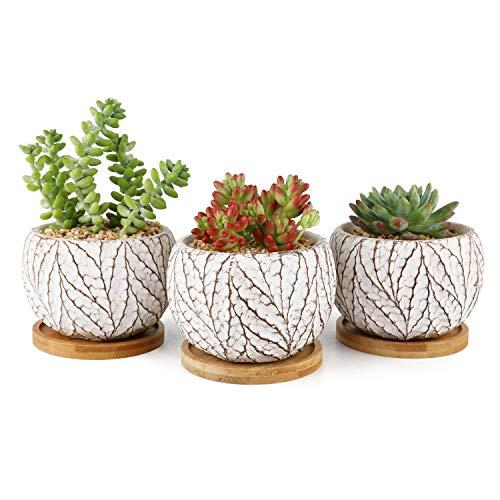 T4U 10cm Zement Sukkulenten Töpfe Rund Weiß mit Untersetzer 3er-Set, Beton Blumentopf Übertopf Klein für Kakteen Moos Zimmerpflanzen