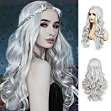Women's Long Curly Wavy Silver Gray Wigs Cosplay Costume Halloween Wigs Synthetic Middle Parting...