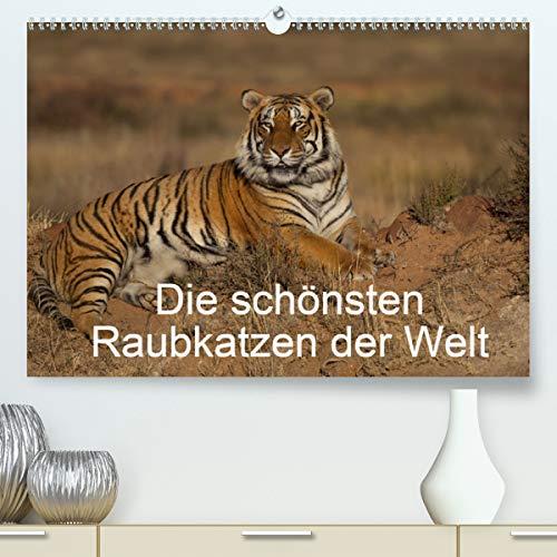 Die schönsten Raubkatzen der Welt (Premium, hochwertiger DIN A2 Wandkalender 2021, Kunstdruck in Hochglanz)