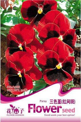 1 Original Pack, 30 graines / Pack, Red Blotch Pansy Viola wittrockiana long Blooming Hardy Flowers # A088