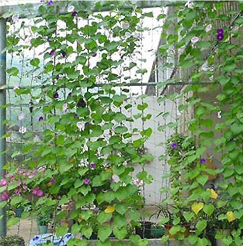 TQ 1.8 * 1.8m Garden Green Eco-Friendly Trellis Netting Support Climbing Bean Plant Nets Grow Fence