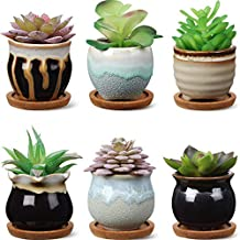 6 Pieces Ceramic Succulent Planter Potted Ceramic Succulent Pots with Drain Holes 6 Pieces Bamboo Trays Small Plant Containers Ideal Present for Decorating Home and Office (Elegant Style)