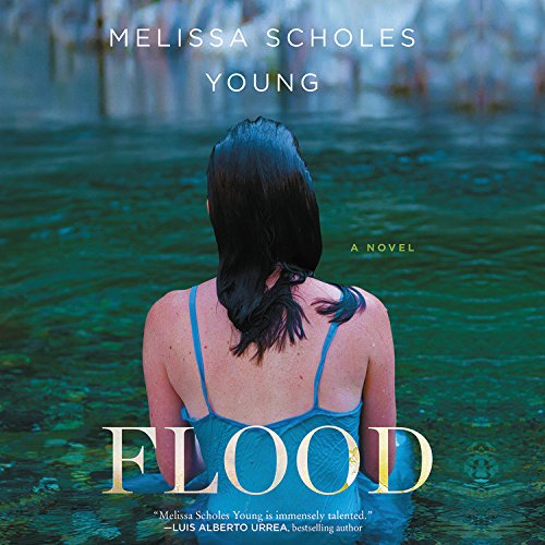 Flood Audiobook By Melissa Scholes Young cover art