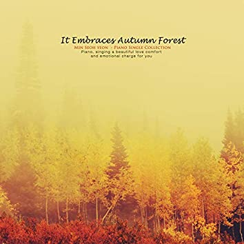 A Forest With Autumn