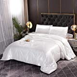 Queen Comforter Set 5pcs Satin Silky White Luxury Quilt,Fitted Sheet and Flat Sheet with 2 Matching Pillow Covers