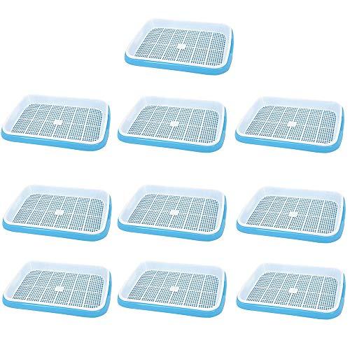 KUANDARMX Sehr gut Saatgut-Sprouter-Tablett 10-teilige Hydroponik-Anbausätze Saatgut-Tabletts für Hausgartengewächshaus Bodenfreie Bohnen Erbsen Mung-Weizengras-Züchter Anwesend, Blue