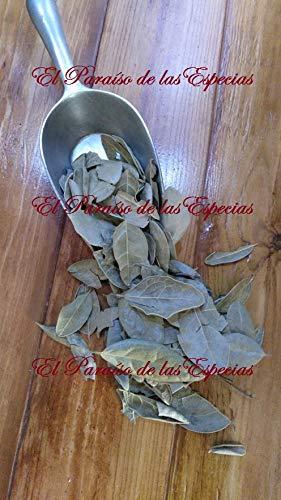 Boldo Hojas Seleccionadas 1000 grs - Boldo para Infusion 100% Natural (Foto Real del producto)