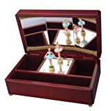 Lake ballerina music box (DX) swan (japan import)