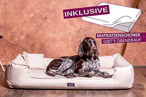 tierlando® Orthopädisches Hundebett Goofy VISCO | ~ inkl. Matratzenschoner ~ | Anti-Haar Kunstleder Hundesofa Hundekorb Gr. XL 120cm Creme Ortho