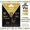 Amplim 256GB 64GB 32GB 2x32GB MicroSDXC Card with Adapter