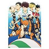 Haikyuu!! Póster de anime de 30 x 46 cm (300 x 460 mm), acabado esmerilado material de papel de...