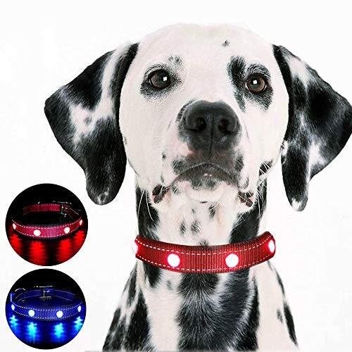 MASBRILL Handgemaakte LED hondenhalsband USB oplaadbaar edelsteen Gemma halsband voor honden 's nachts veiligheid, M (per 24-66 lbs), Rood