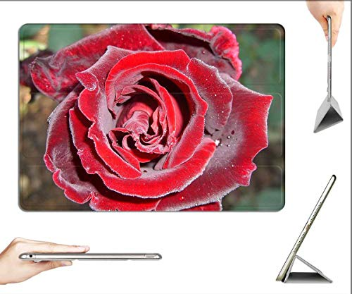 Case for iPad 10.2-inch 2019 (7th Generation) - Rose Red Red Rose Rose Bloom Morgentau Flower