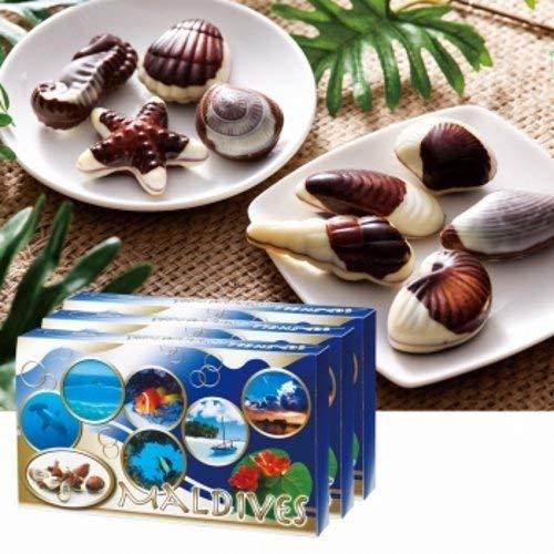 モルディブ シーシェル チョコレート 3箱セット 【モルディブ おみやげ(お土産) 輸入食品 スイーツ】