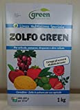 Green Ravenna 1kg zolfo 80% bagnabile oidio mal bianco ticchiolatura vite antiodico