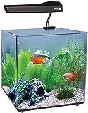 Aqua One Aqua Nano 40 55L Complete Tropical Glass Aquarium Set, 40 cm