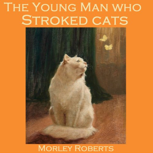 『The Young Man Who Stroked Cats』のカバーアート