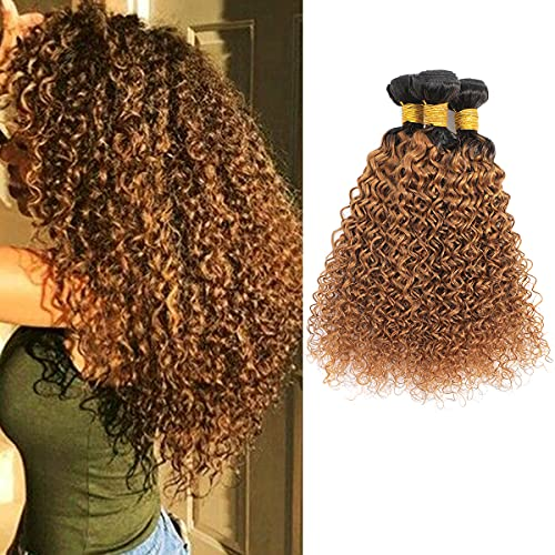 Feelgrace Hair Ombre Kinkys Curly Human Hair Extensions Brazilian Curly Hair 3 Bundles 2 Tone Ombre Hair Weave 1b 30 Blonde Color (8 10 12)