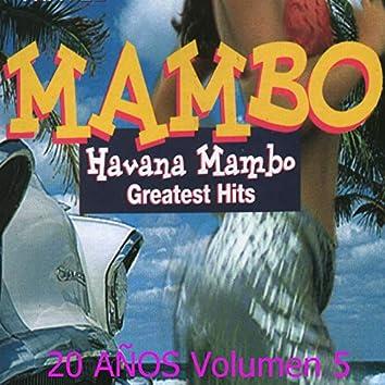 Greatest Hits: 20 Años, Vol. 5