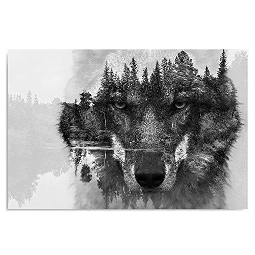 Feeby Frames, Leinwandbild, Bilder, Wand Bild, Wandbilder, Kunstdruck 60x80cm, Wolf, SCHWARZ, WEIß