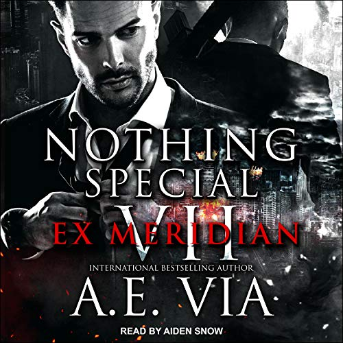 Nothing Special VII audiobook cover art