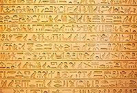 Amxxy 9x6ft壁の象形文字写真の背景古代エジプト古代文明文化象形文字の単語石の彫刻写真の背景旅行観光写真ブースの支柱