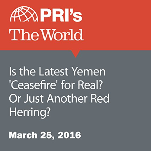 Is the Latest Yemen 'Ceasefire' for Real? Or Just Another Red Herring? audiobook cover art