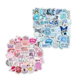 100 Stickers for Children Teens Girls Adults. Fresh and Girly Pink Sticker   Suitable for Water Bottles Laptops Phones Water Bottles Gift Boxes Waterproof Sunscreen Stickers Can Be Pasted Repeatedly