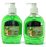 HealthSmart AntiBacterial/Sanitizer Liquid Hand Soap with Pump 7.5 Fl. Oz.Cucumber Melon (Pack of 2)