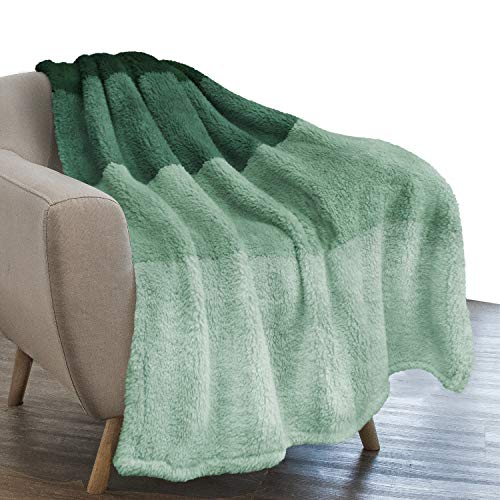 PAVILIA Fluffy Sherpa Throw Blanket Ombre   Gradient Plush, Soft, Fuzzy, Decorative Accent Throw Blanket for Couch Sofa Bed   Cozy Warm Decorative Furry Faux Fur Blanket, 50x60 Inches Green