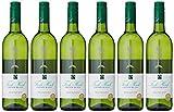 Fish Hoek Chenin Blanc Wine