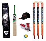 Shriji Small Boys Cricket Set, Wooden Cricket Kit with Carry Bag, Cricket Kit