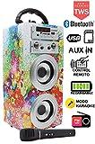 DYNASONIC - Altavoz Bluetooth Portatil Karaoke con Micrófono Incluido | Lector USB y SD, Radio FM Modelo 025 (Modelo 1, 1 Micro TWS)