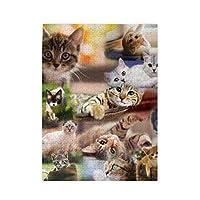 パズルcat collage 500ピース 木製パズルミニ 大人の減圧 絶妙な誕生日プレゼント