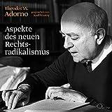 Aspekte des neuen Rechtsradikalismus: Ein Vortrag (Politik & Gesellschaft) - Theodor W. Adorno