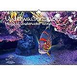 Calendario perpetuo subacuático DIN A3 – Calendario perpetuo submarino – Malma mágica
